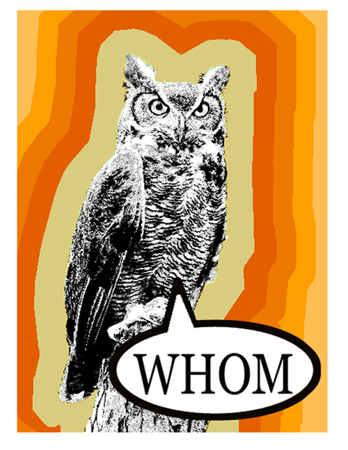 owl02 small